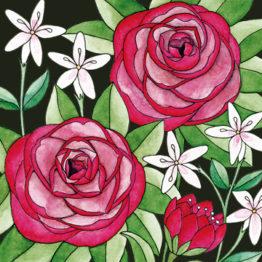 Elisabeth Aranda Illustration Art Prints