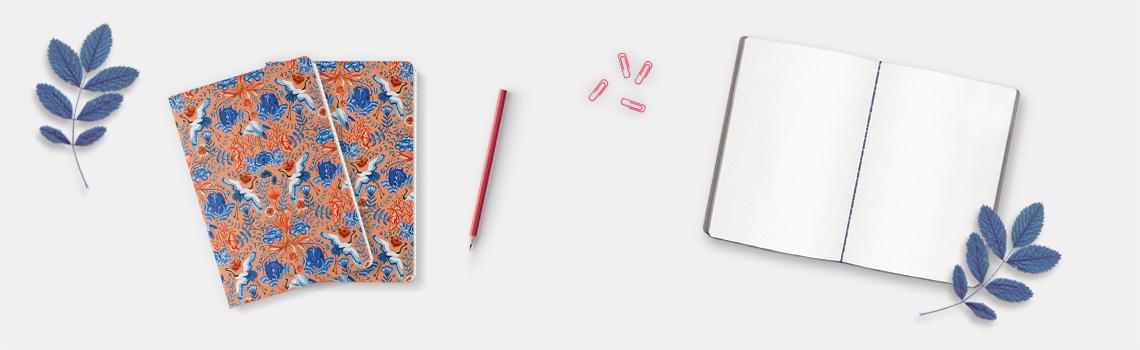Notebooks Elisabeth Aranda