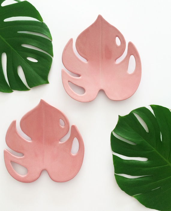 Pink Monstera leaf