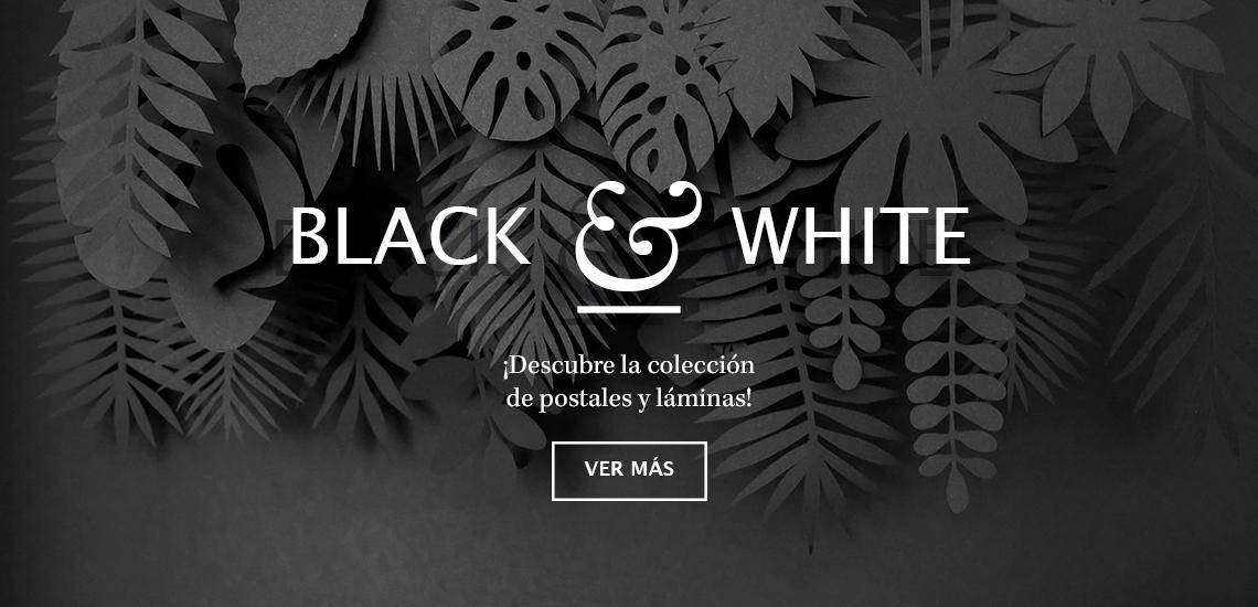 Colección Black & White de Elisabeth Aranda